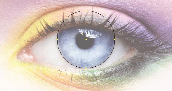 Рисуем радужную оболочку глаза